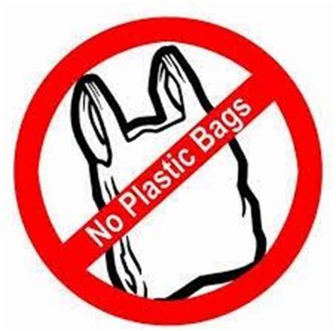 Plastic is harmful essay